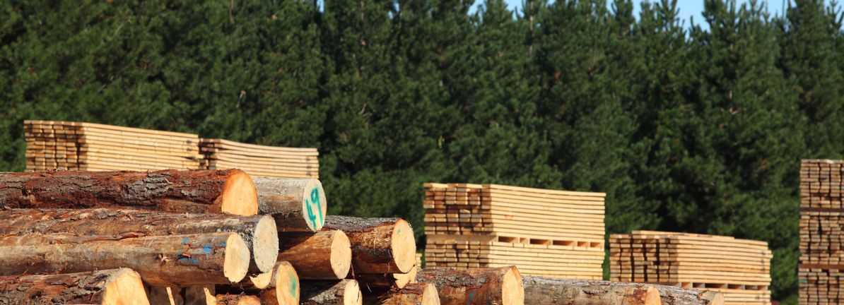 All You Need To Know About West Fraser Timber Co  Ltd 's